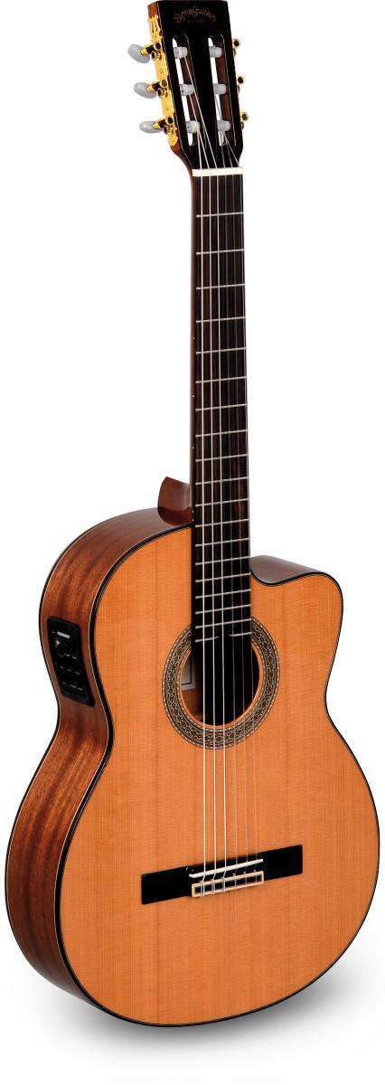 hlava klasické kytary - vhodné nylonové struny